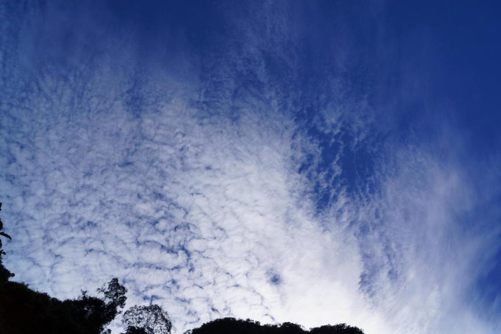 Sky blue 3 by a6-k