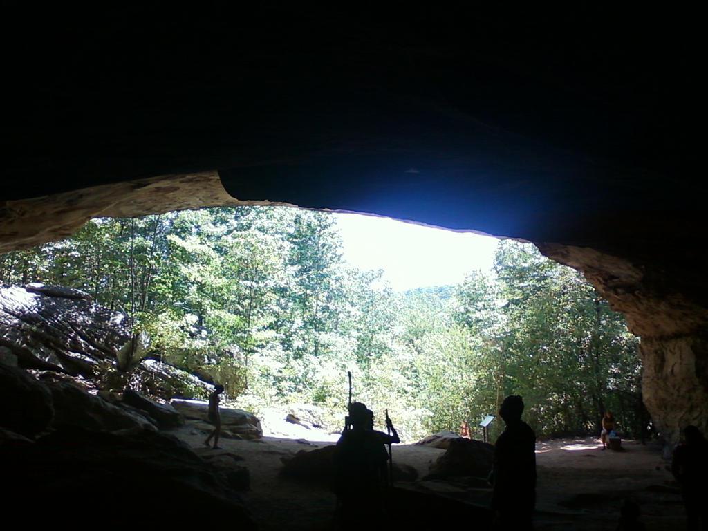 Bear Cave by SassyPrincess-LexyLu