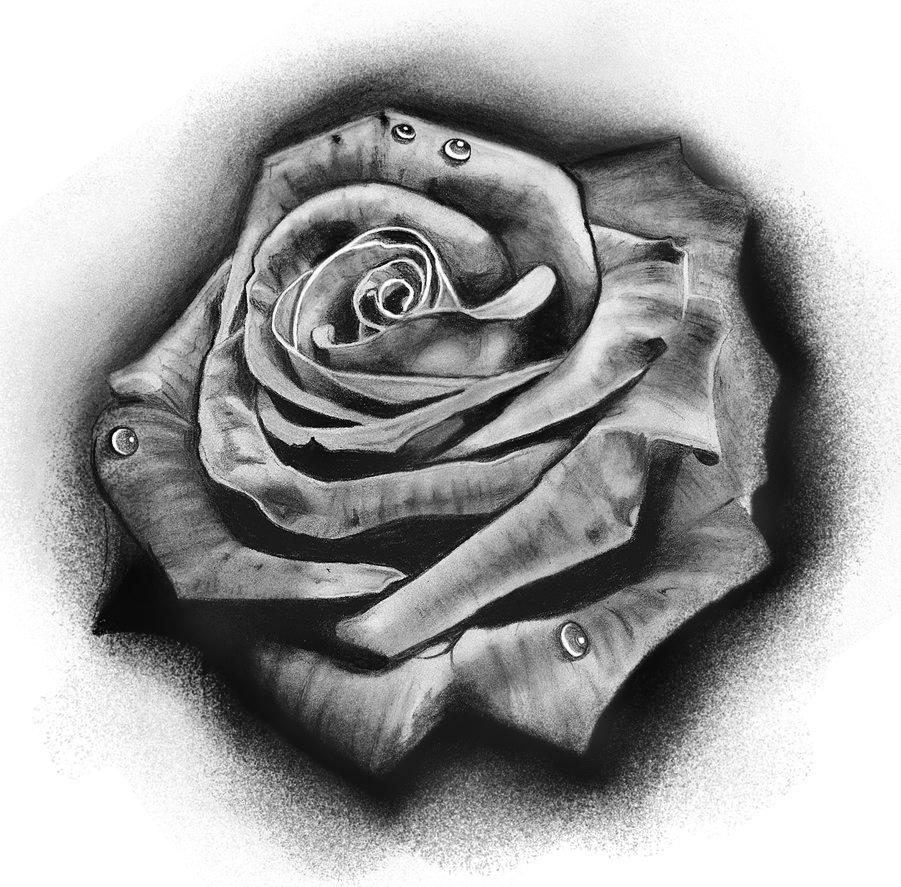 24 Black And White Tattoo Designs Ideas: Rose By Badfish1111 On DeviantArt