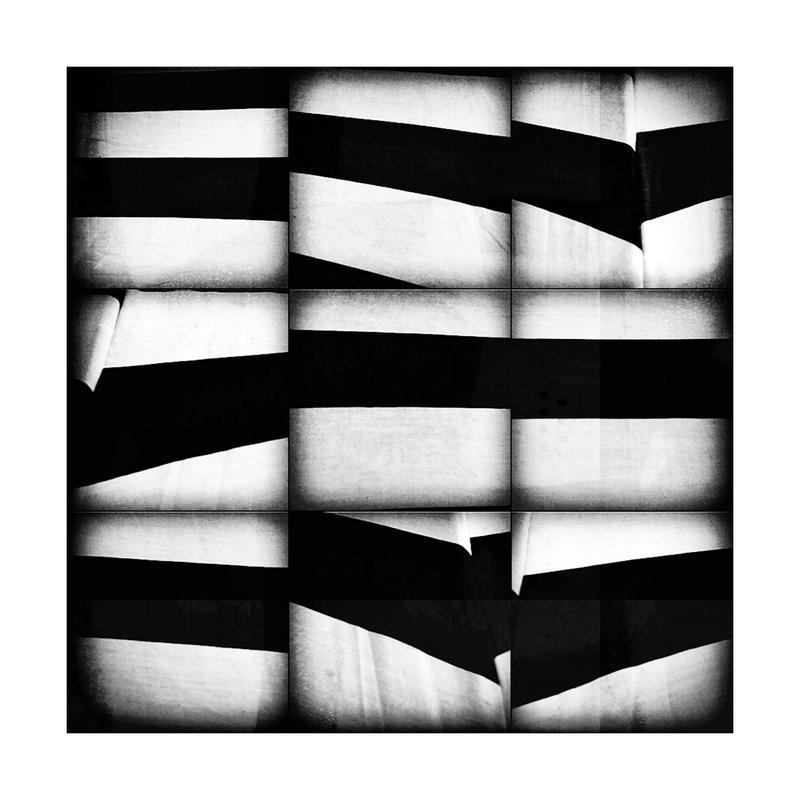 Zebra by KizukiTamura