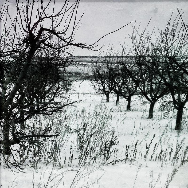 Ink And Snow by KizukiTamura
