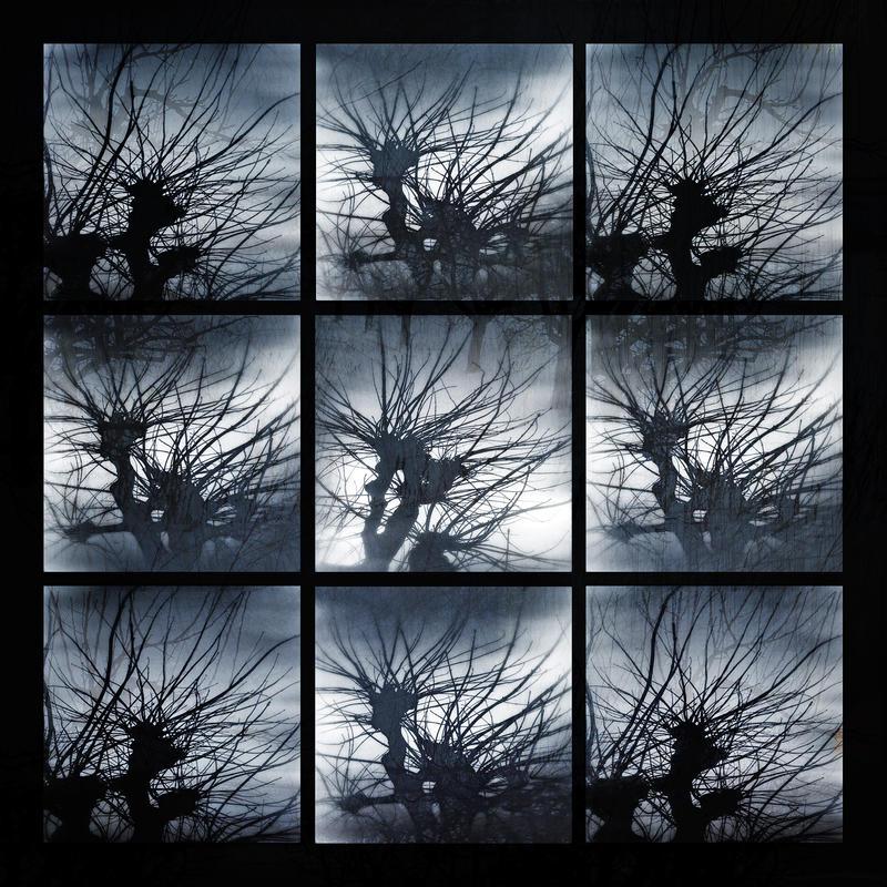 Letter To The Sky by KizukiTamura