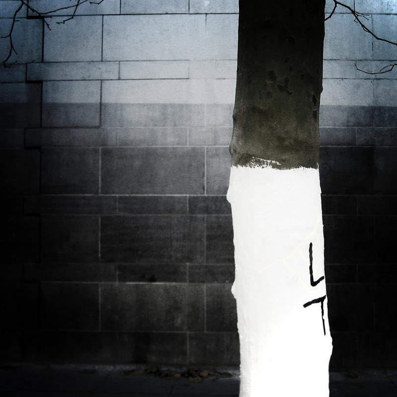 White And Night by KizukiTamura