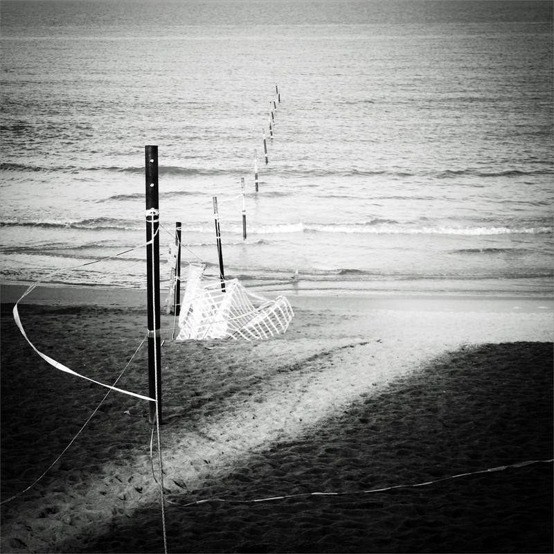 Wire by KizukiTamura