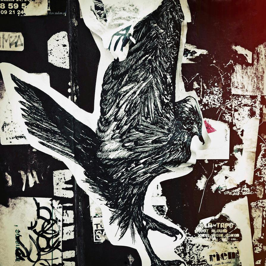 Black Bird by KizukiTamura