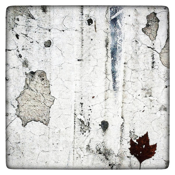 Autumn Leave by KizukiTamura
