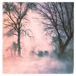 Misty Morning by KizukiTamura