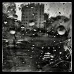 Too Much Rain Kills The Sky