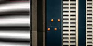 Back Side With Orange Dots by KizukiTamura