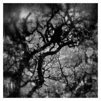 Scintigraphy of my soul by KizukiTamura