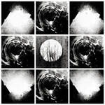 Moon Eyes Vortex