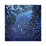 December Reflections | IX