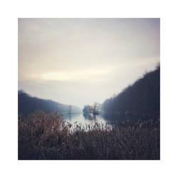 December Reflections   VIII
