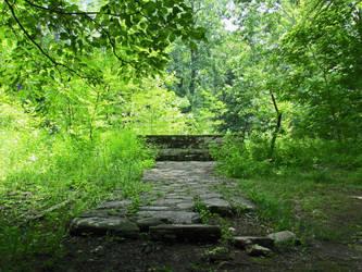 Step into Nature by MegaCharmoeleonX