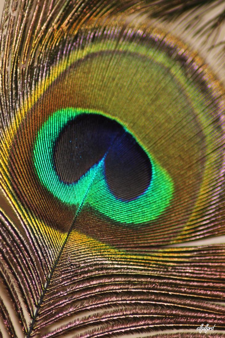 The Eye by EmmaFulford
