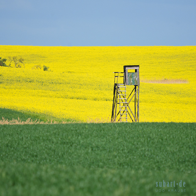 HOCHSTAND-RAPS-04 by subart59
