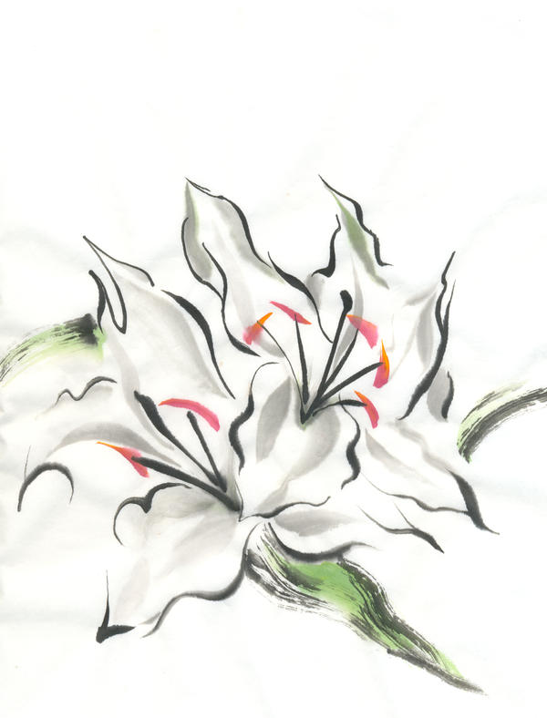 2009.11.02 Flowers by catherinejao