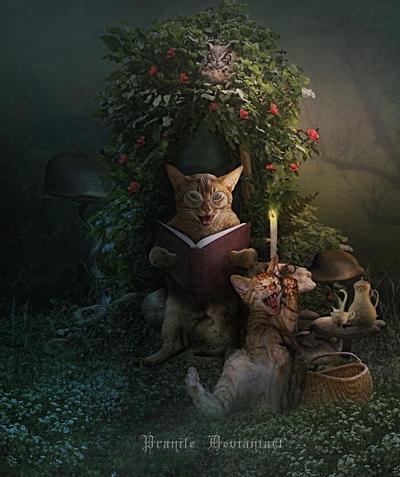 The Storyteller by Studiopranile