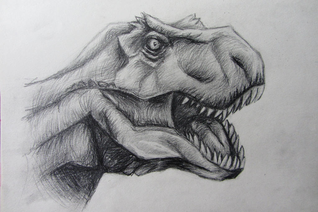 Sketch of tyrannosaurus by KateHubar