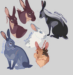 Bunny doodles by Atroquin