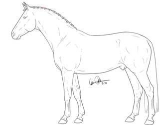 Warmblood stallion by elipiart