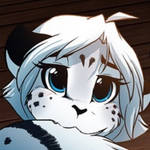 Maeve Profile Picture