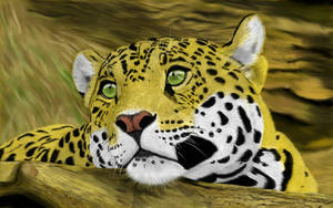 Jaguar by Brownie-frito
