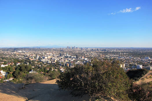 Los Angeles - Runyan Canyon 2