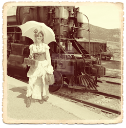 EloSteam Train