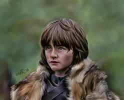 Game of Thrones - Bran by DaaRia