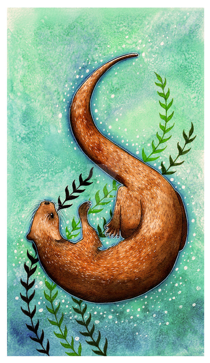 Otter by Bumble-a-Bee