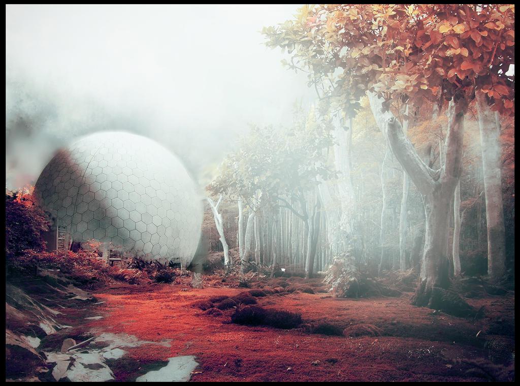 surreal autumn by gamka