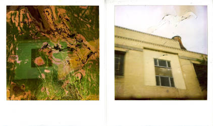 polaroid diptych 2 by taybot3000