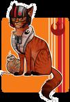 Pilot Poe Cat