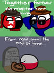 Countryball Comic #7 - Together Forever