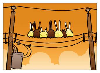 A Bunny Wedding by boum