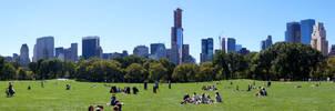 Centrai Park New York Skyline