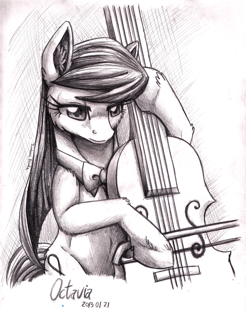 Pencil Portrait - Octavia by InuHoshi-to-DarkPen