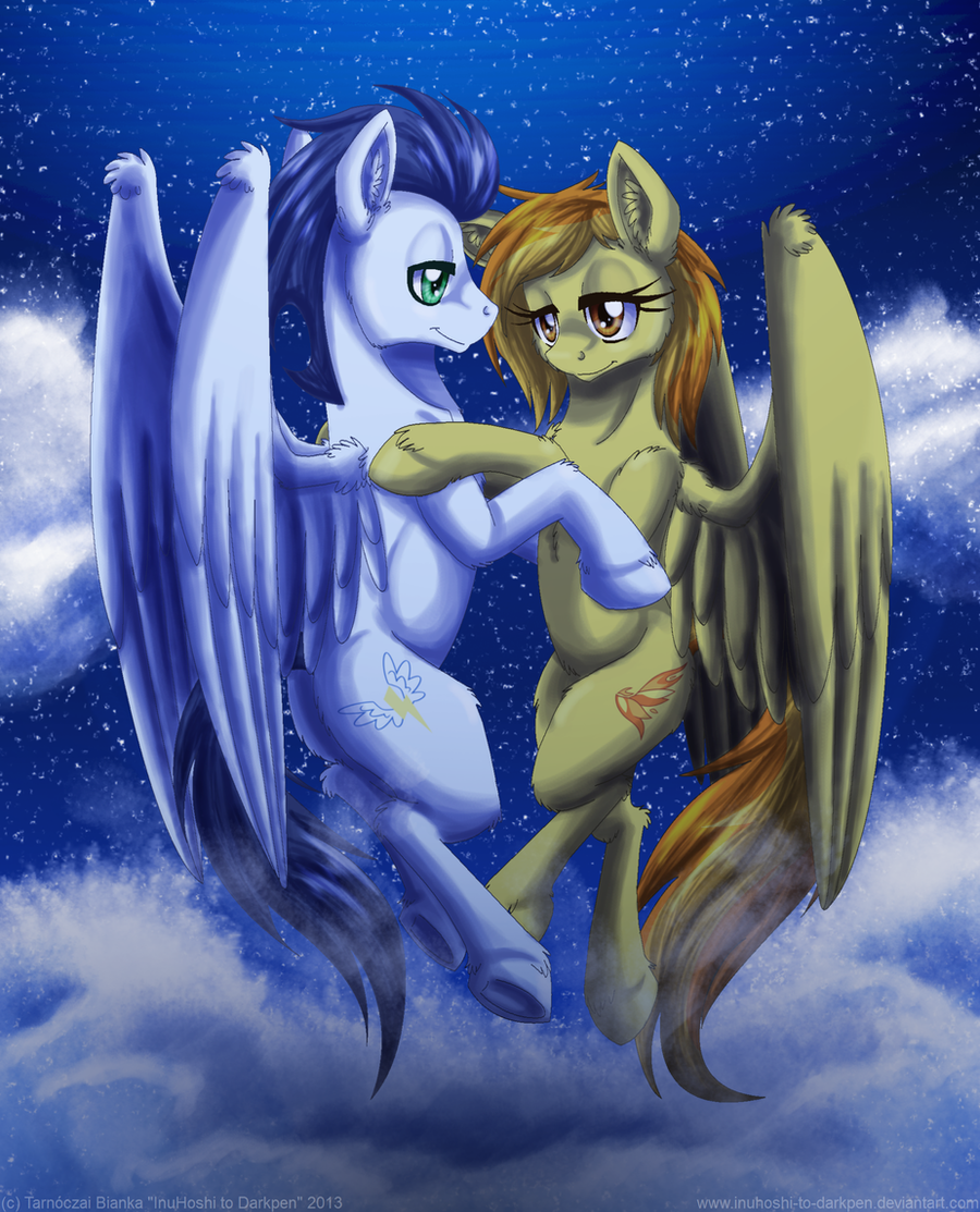 Above The Clouds by InuHoshi-to-DarkPen