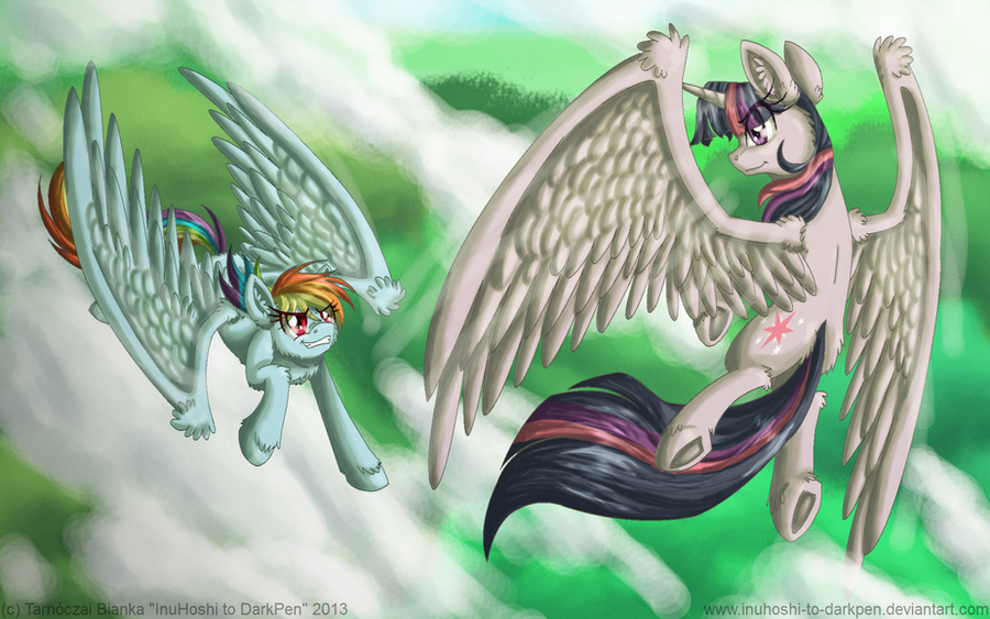 Trough the Clouds by InuHoshi-to-DarkPen