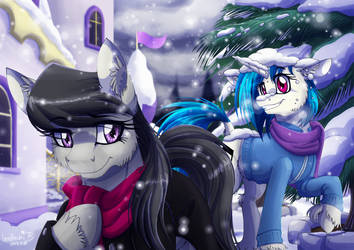 Stroll in the Snow