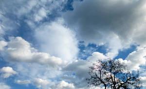 Autumn sky by shilaktit