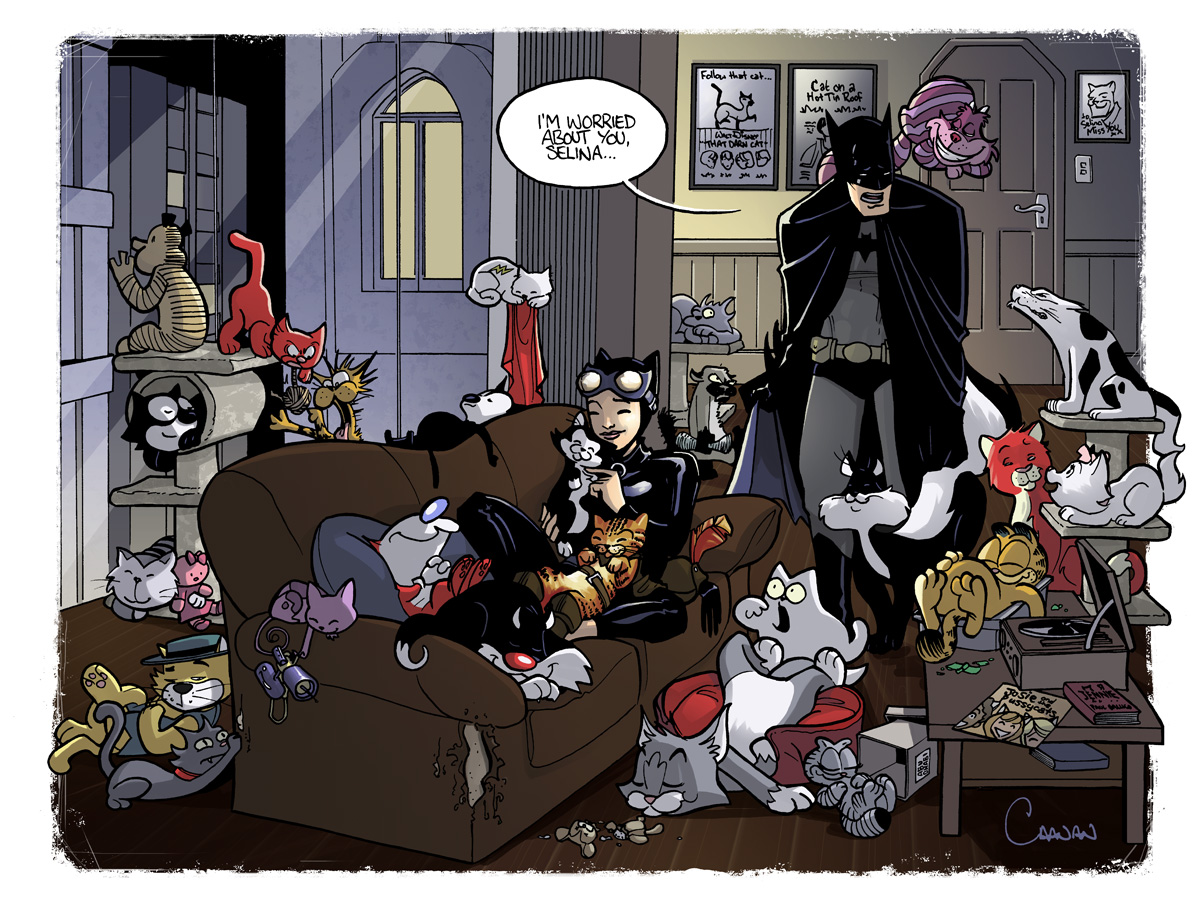 Catwoman the cat lady by caanantheartboy