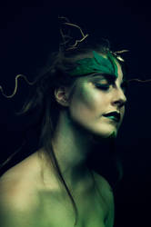 Precious Druid II