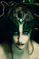 Precious Druid I