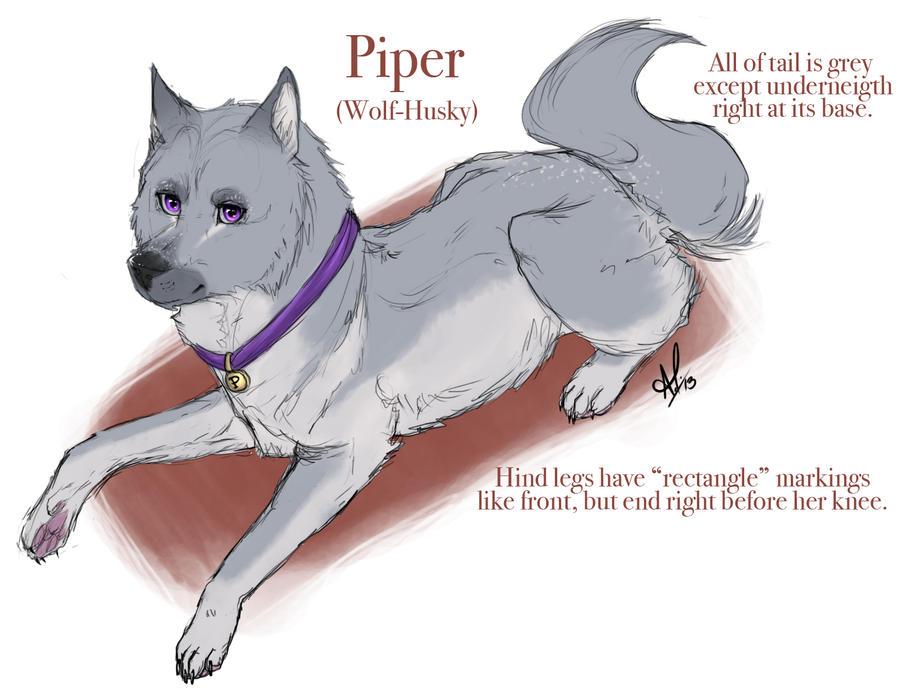 Image Result For Dog Sled Coloring