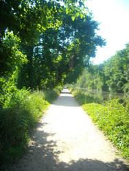 Path by tarastarr1