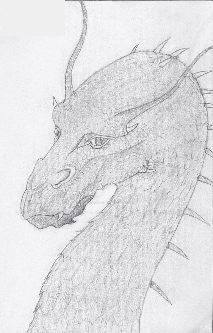 Eragon Cover Sketch - Saphira by Kurosaki224