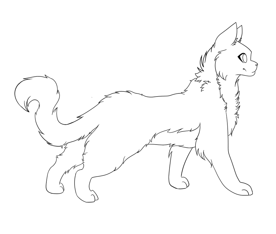 How To Draw A Warrior Cat Kittypet O