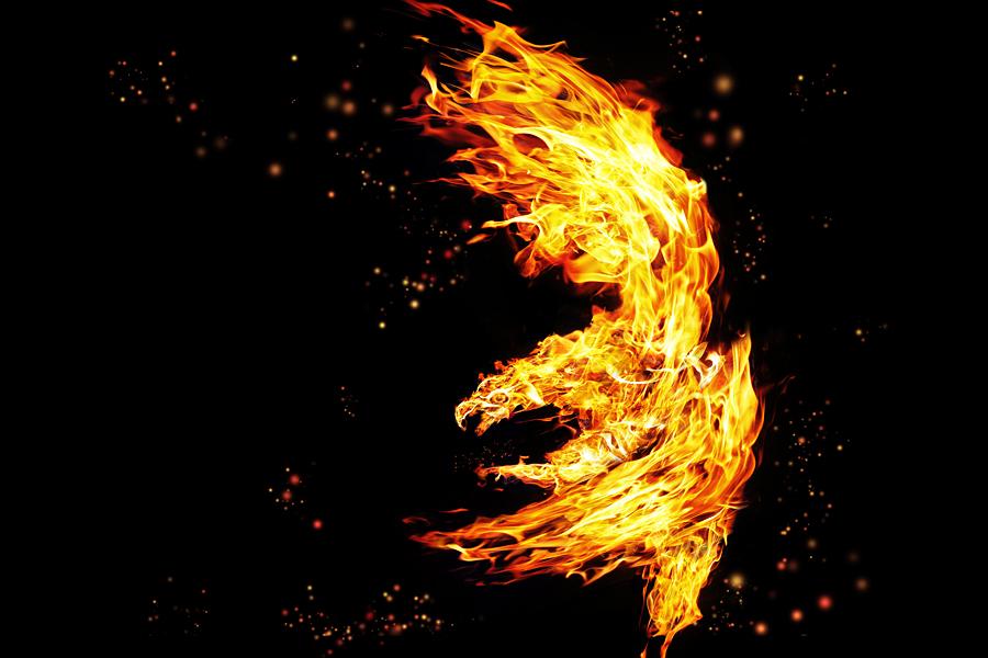 Firebird by Daniel-Volpert